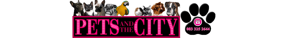 pets-and-the-city